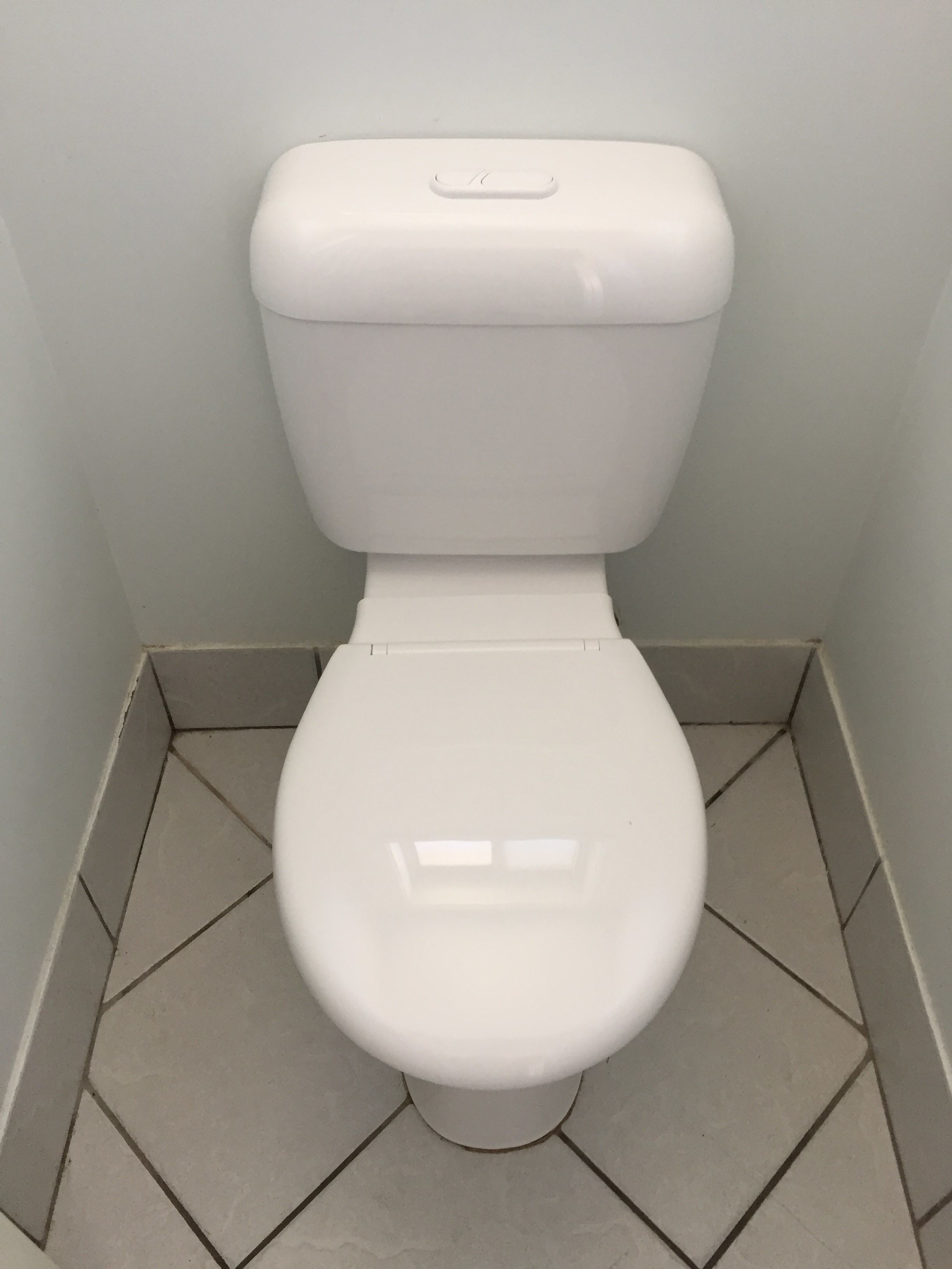 Toilet Repair – Cistern Change