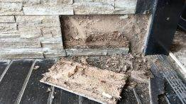 water and termite damage