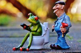 fix toilet won't flush