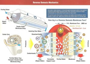Reverse Osmosis Mechanics
