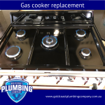 Gas Cooker Replacement